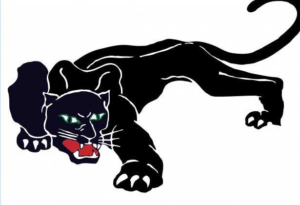 Black Panther Clipart Free Stock Photo.
