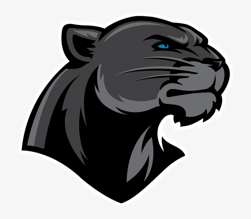 Panthers Logo Png For Kids.