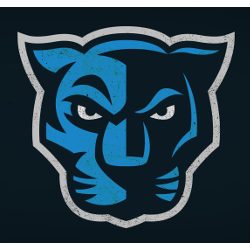 Carolina Panthers Concept Logo.