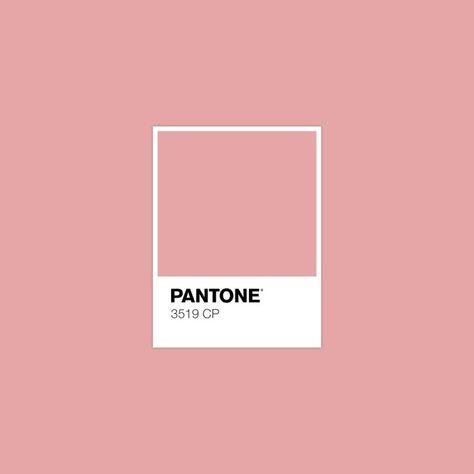 Pantone da nossa Logo. Criado com Pantone Studio. em 2019.