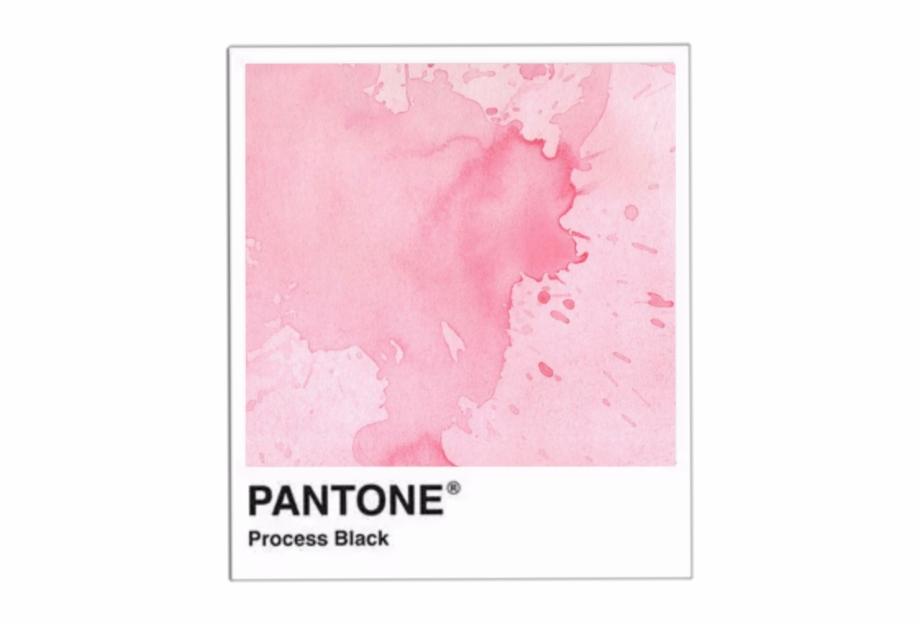 pantone #polaroid #png #pink #splash #sticker #overlay.