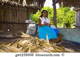 Papantla Images and Stock Photos. 59 papantla photography and.