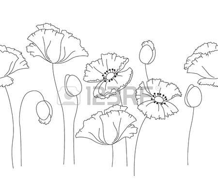 189 Papaver Stock Illustrations, Cliparts And Royalty Free Papaver.