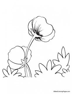 Poppy Coloring Pages.