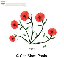 Papaveraceae Stock Illustrationen. 46 Papaveraceae Clipart Bilder.