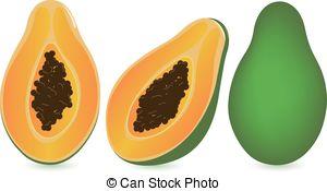 Papaya Stock Illustrations. 1,514 Papaya clip art images and.