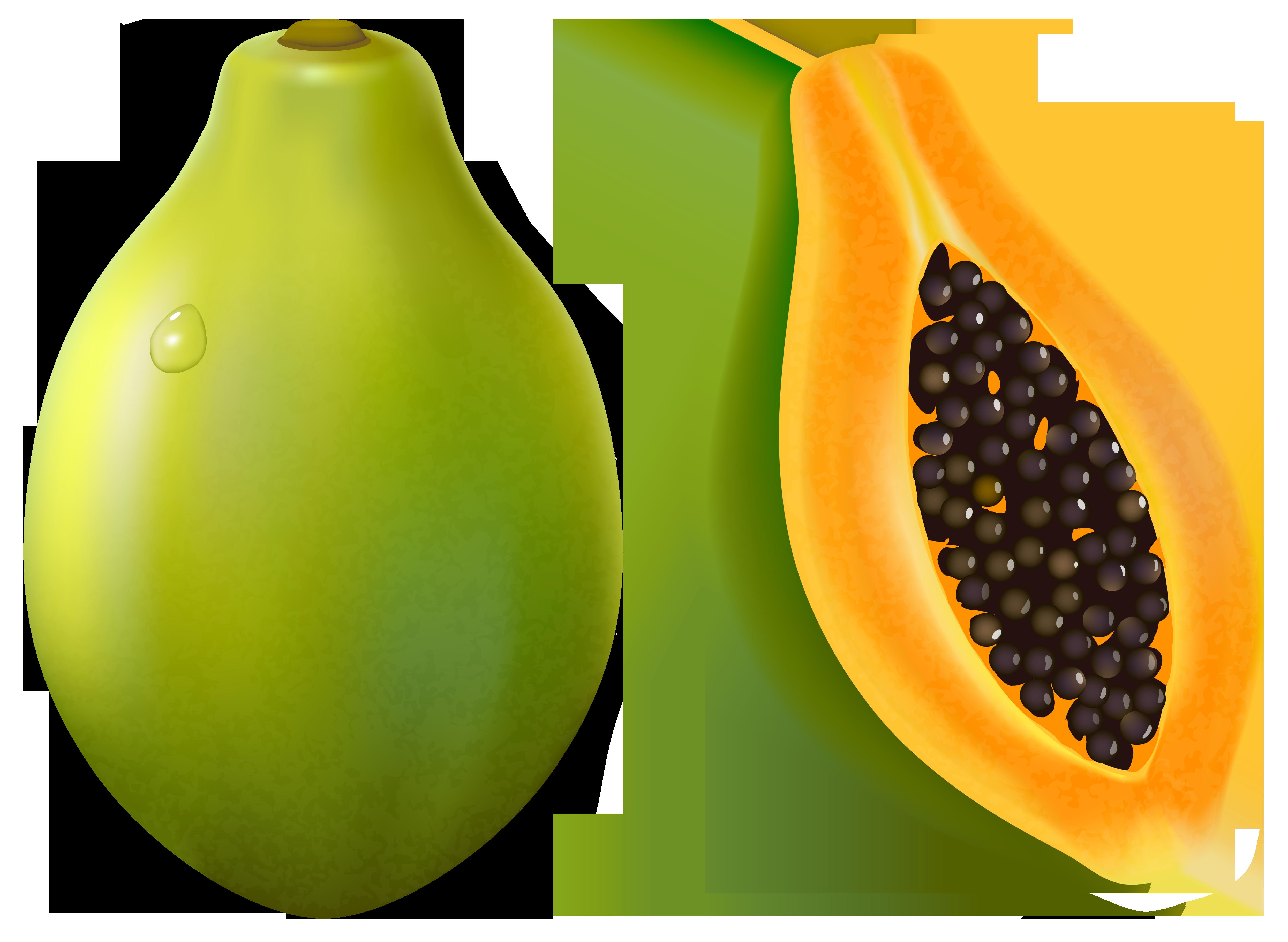 Papaya PNG Vector Clipart Image.