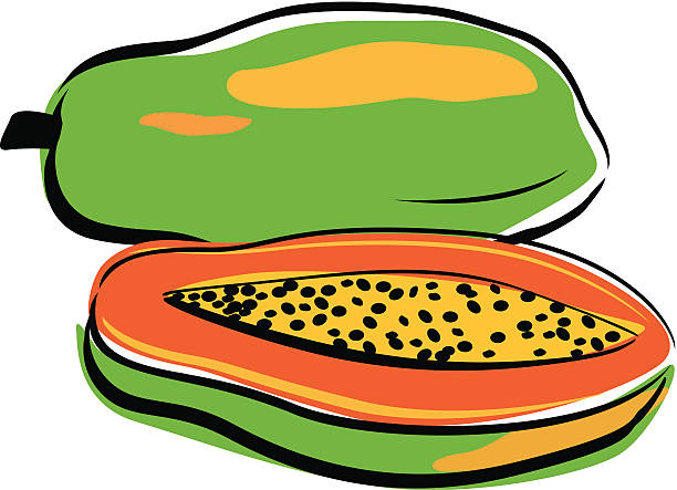 Collection of Papaya clipart.