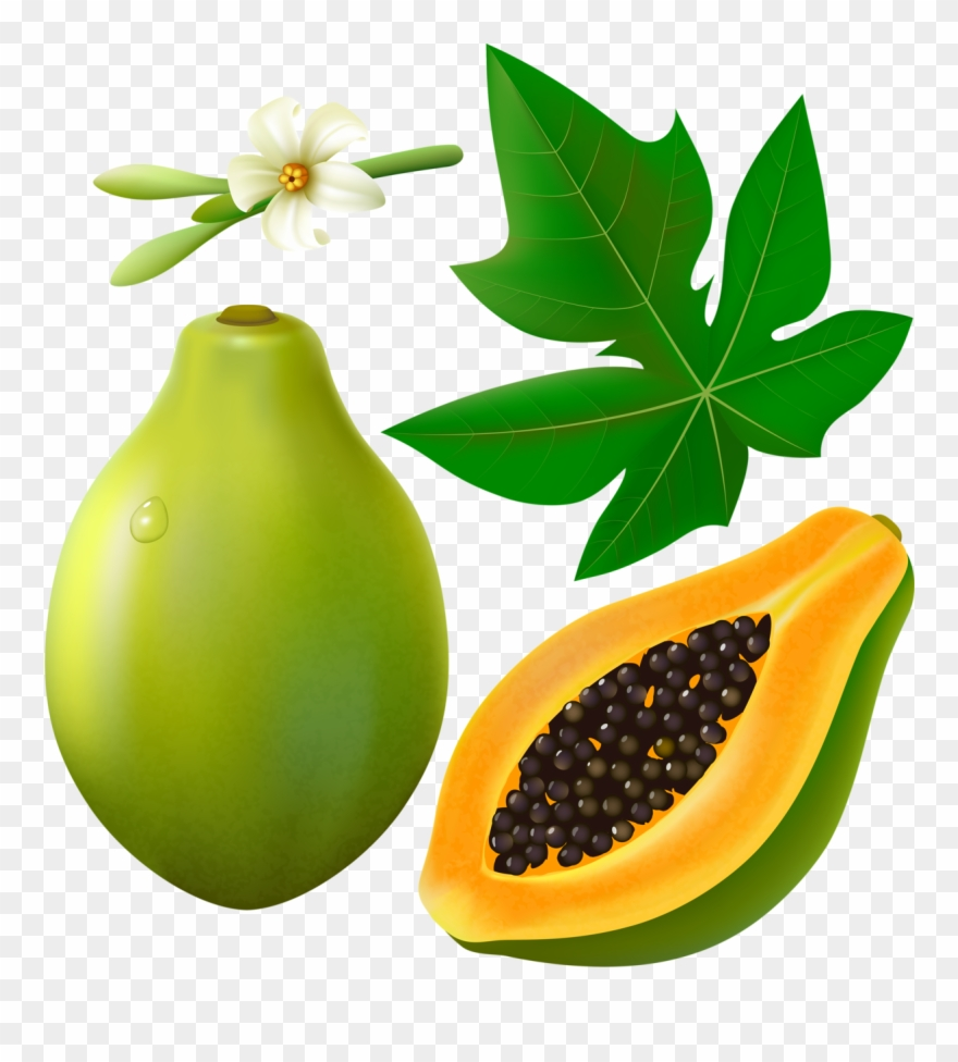 Фотки Green Papaya, Cartoon Stickers, Painted Wine.