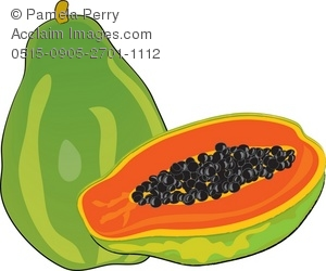 Clip Art Illustration of a Papaya.