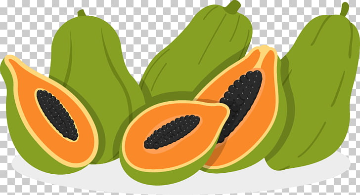 Papaya Euclidean Fruit Illustration, papaya PNG clipart.