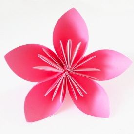 1000+ images about paper flowers on Pinterest.