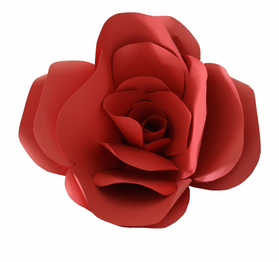 Paper Flower Png.