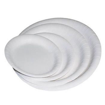 Disposable Paper Plates.