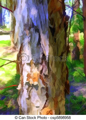 Stock Illustration of Paperbark Tree.