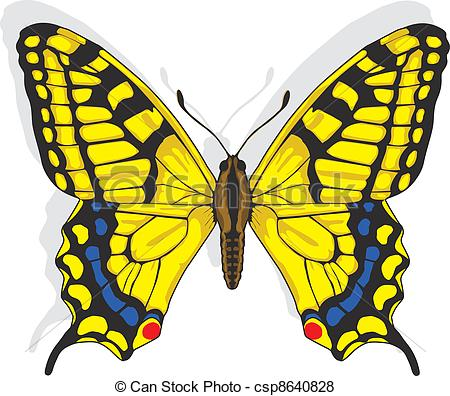 Vector of Swallowtail butterfly.
