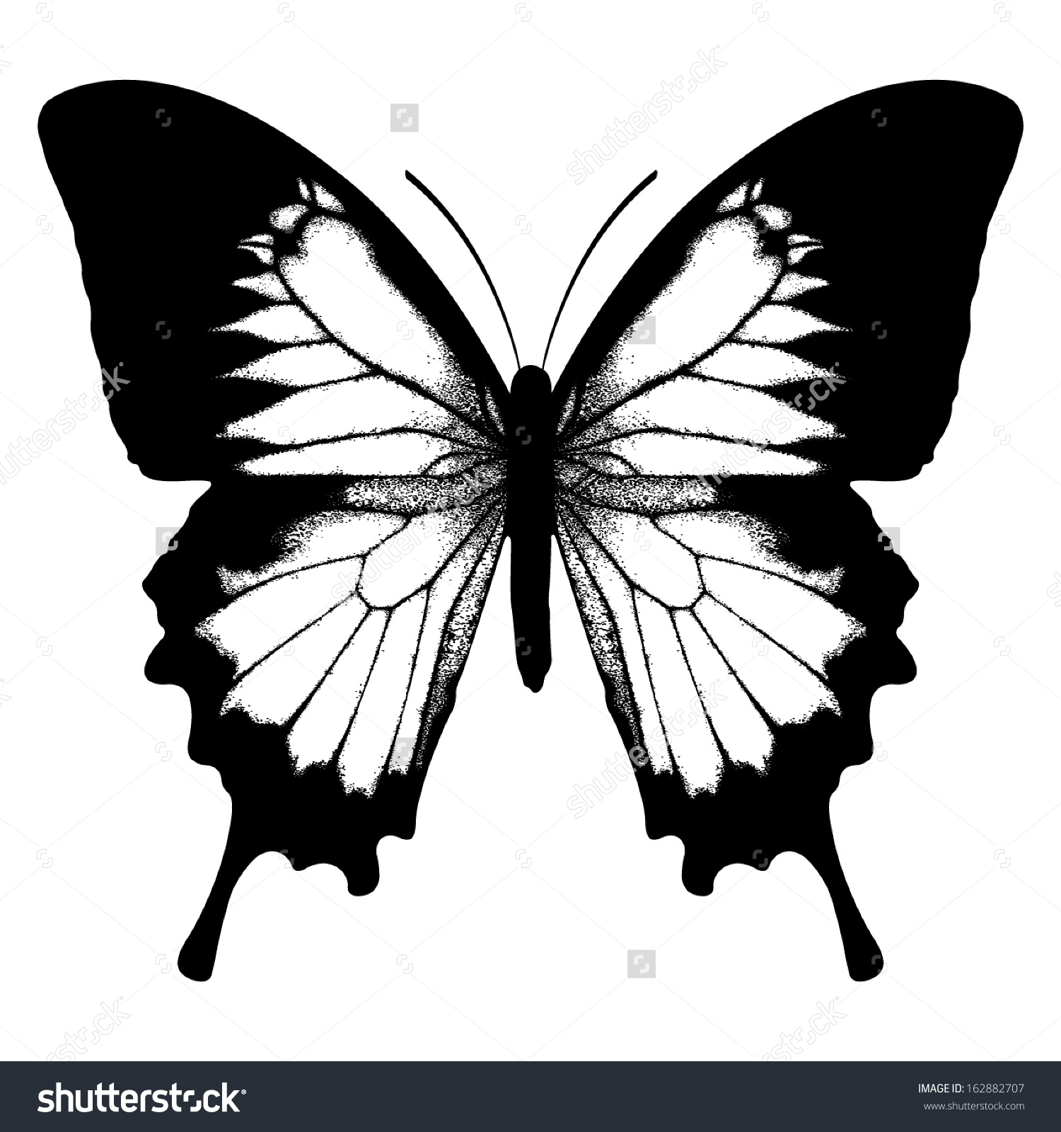 Papilio Butterfly Clipart