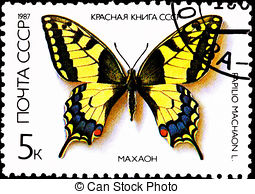 Papilio Stock Illustrations. 158 Papilio clip art images and.
