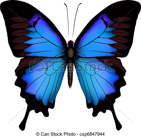 Swallowtail Stock Illustrations. 488 Swallowtail clip art images.