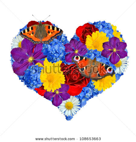 Heart butterfly free stock photos download (1,282 Free stock.