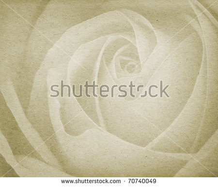 Roses pictures free stock photos download (1,937 Free stock photos.