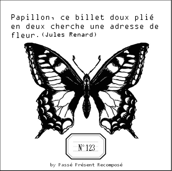 1000+ ideas about Image Papillon on Pinterest.