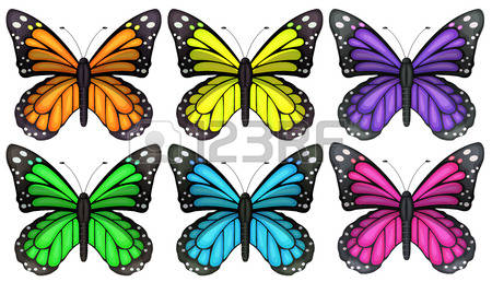 Papilionidae Images & Stock Pictures. Royalty Free Papilionidae.