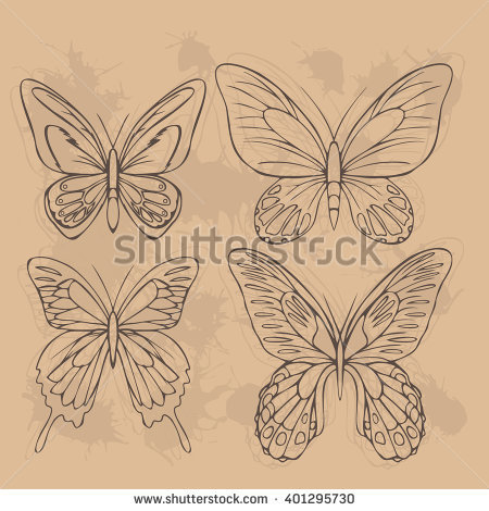 Papilionidae Stock Photos, Royalty.