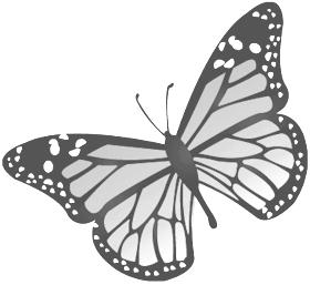 Images clipart papillons.