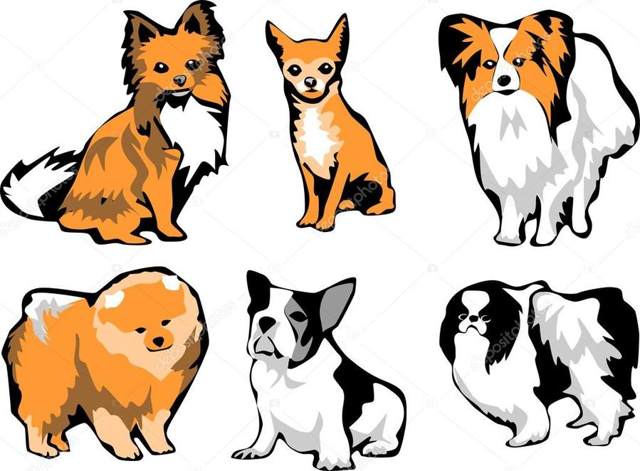 Download small dog illustration clipart Dog breed Papillon.