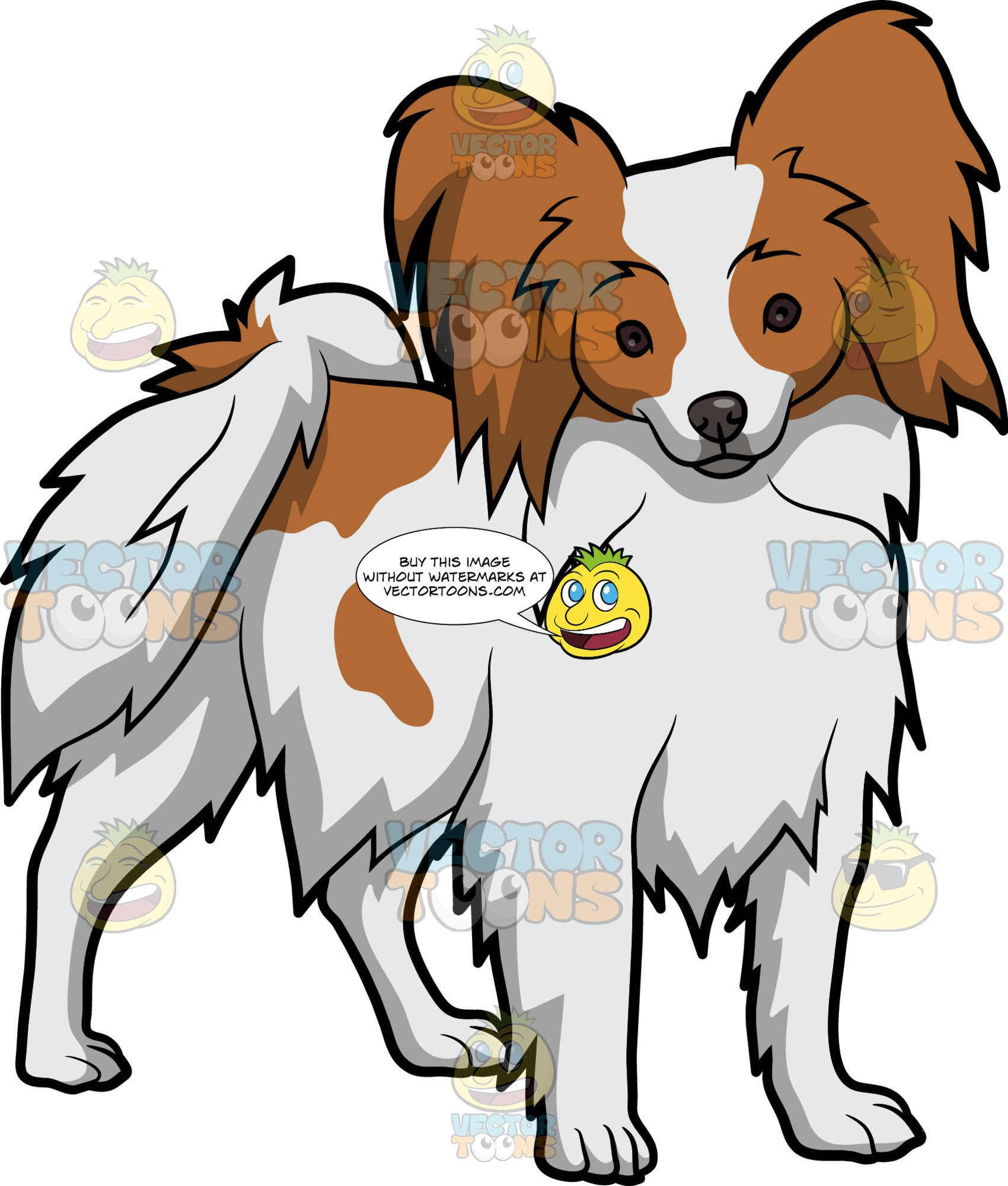 An Alerted Papillon Dog.