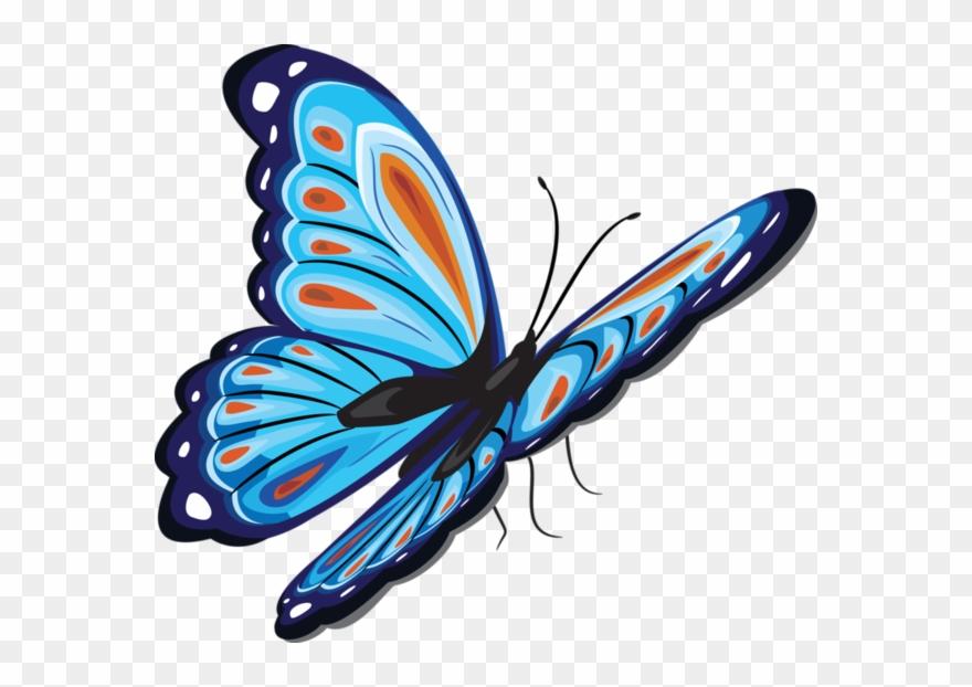 Rainbow Butterfly Clipart Papillon.