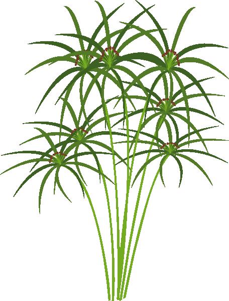 Papyrus Clip Art at Clker.com.