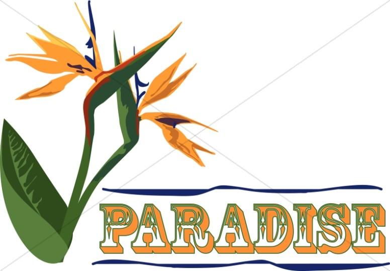 Paradise Clipart.