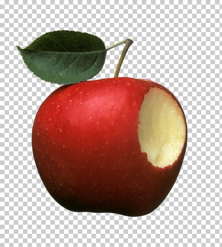 Paradise apple, A hole in a red apple PNG clipart.
