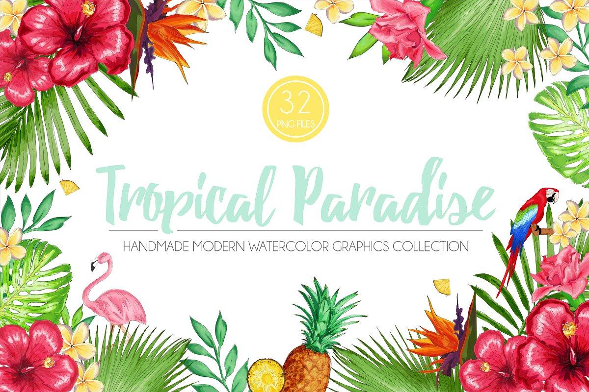 Tropical Paradise Graphic Set ~ Illustrations ~ Creative Market.