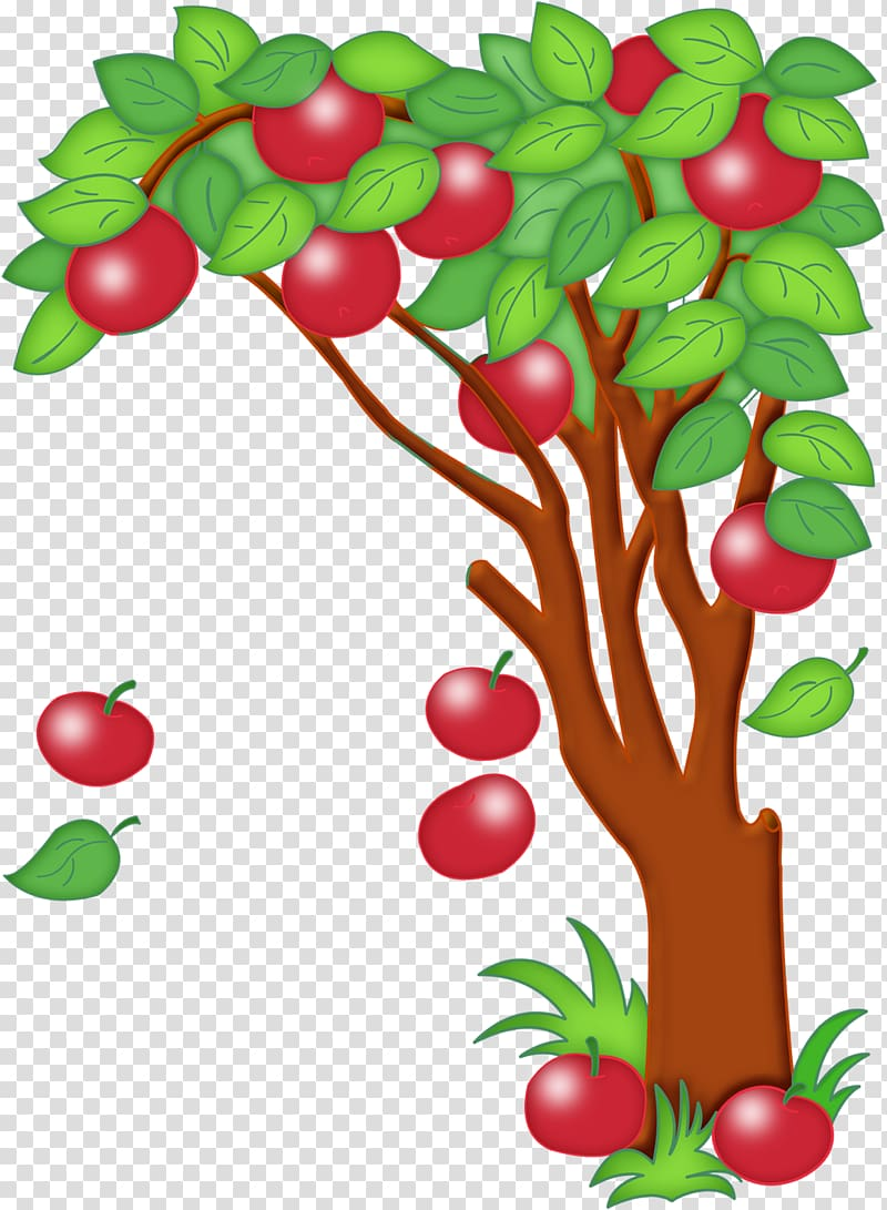 Paradise Apple transparent background PNG cliparts free.