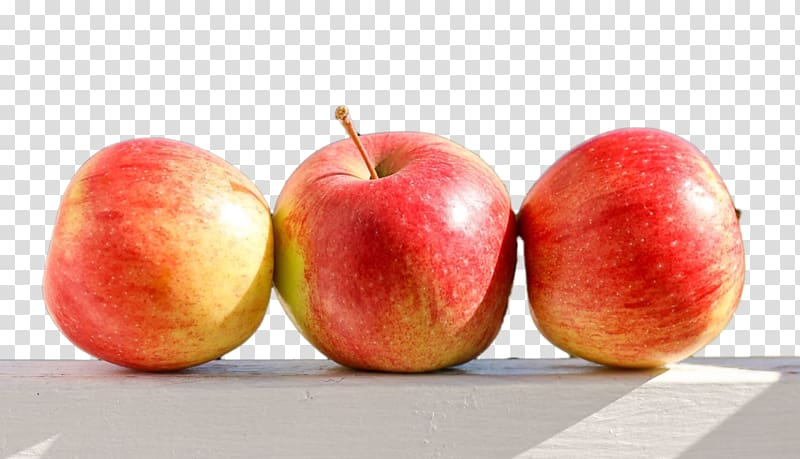 Painting Food Paradise apple, others transparent background.