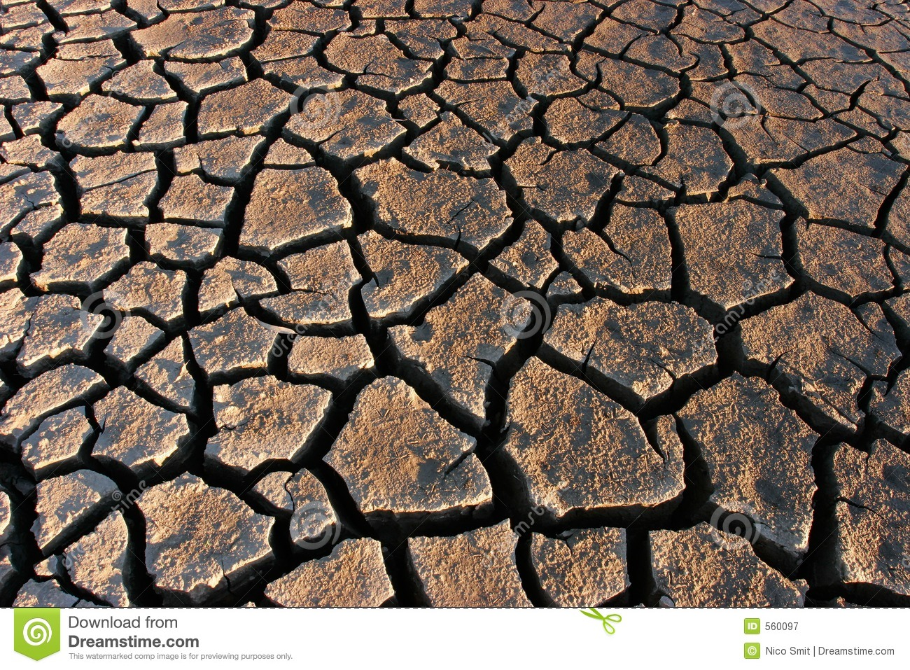 Parched Land Royalty Free Stock Photography.