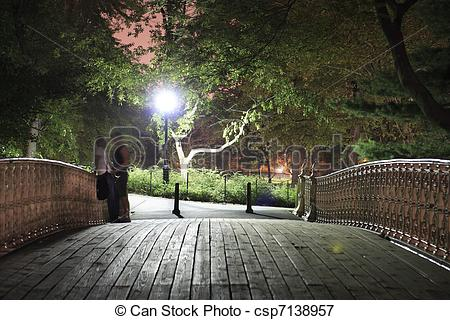 Picture of Central Park bridge at night.