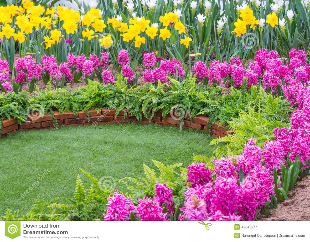 Colorful Flower In The Park. Spring Landscape. Stock Photo.