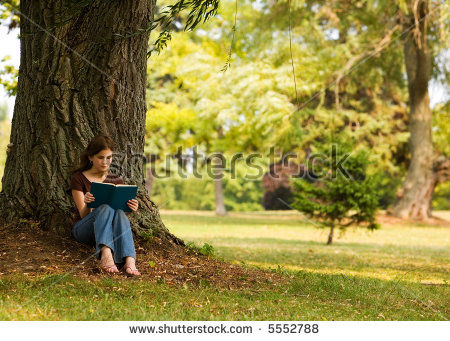 Middle School Girl Reading Book Under Stock Photo 5552788.
