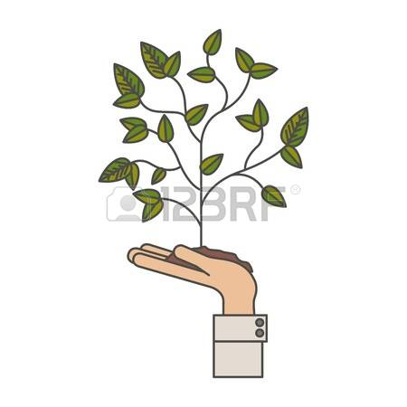 4,347 Botanical Park Stock Vector Illustration And Royalty Free.