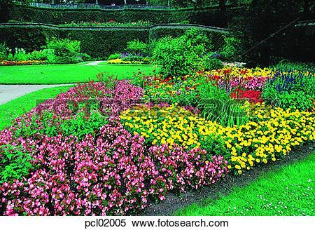 Stock Image of flower, garden, gardening, park, plant, grass.