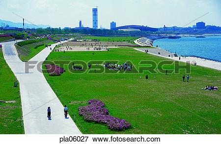 Picture of terrace land on the river, park, road, street, way.