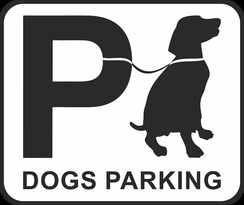 Parking, Lot.