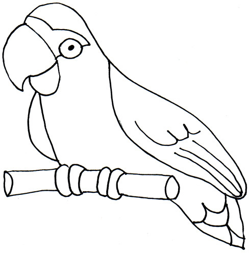 35+ Parrot Clipart Black And White.