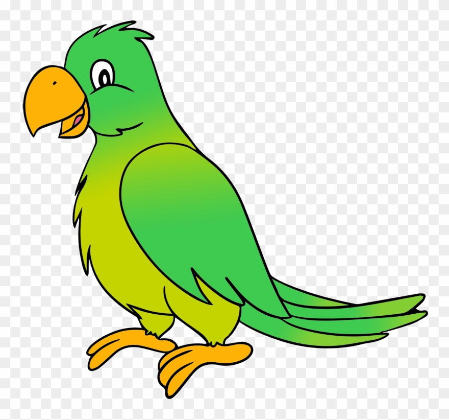 Margarita Clipart Parrot.