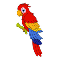 Red Blue Yellow Macaw Parrot Clipart.