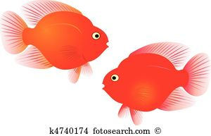 Parrotfish Clipart Illustrations. 19 parrotfish clip art vector.